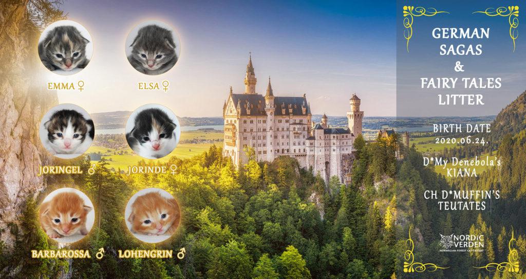 Nordic Verden - norvég erdei macska tenyészet - German Sagas & Fairy Tales alom