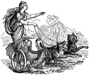 Freya és a norvég erdei macskák