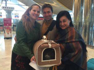 Repülőtéren a norvég erdei cicával
