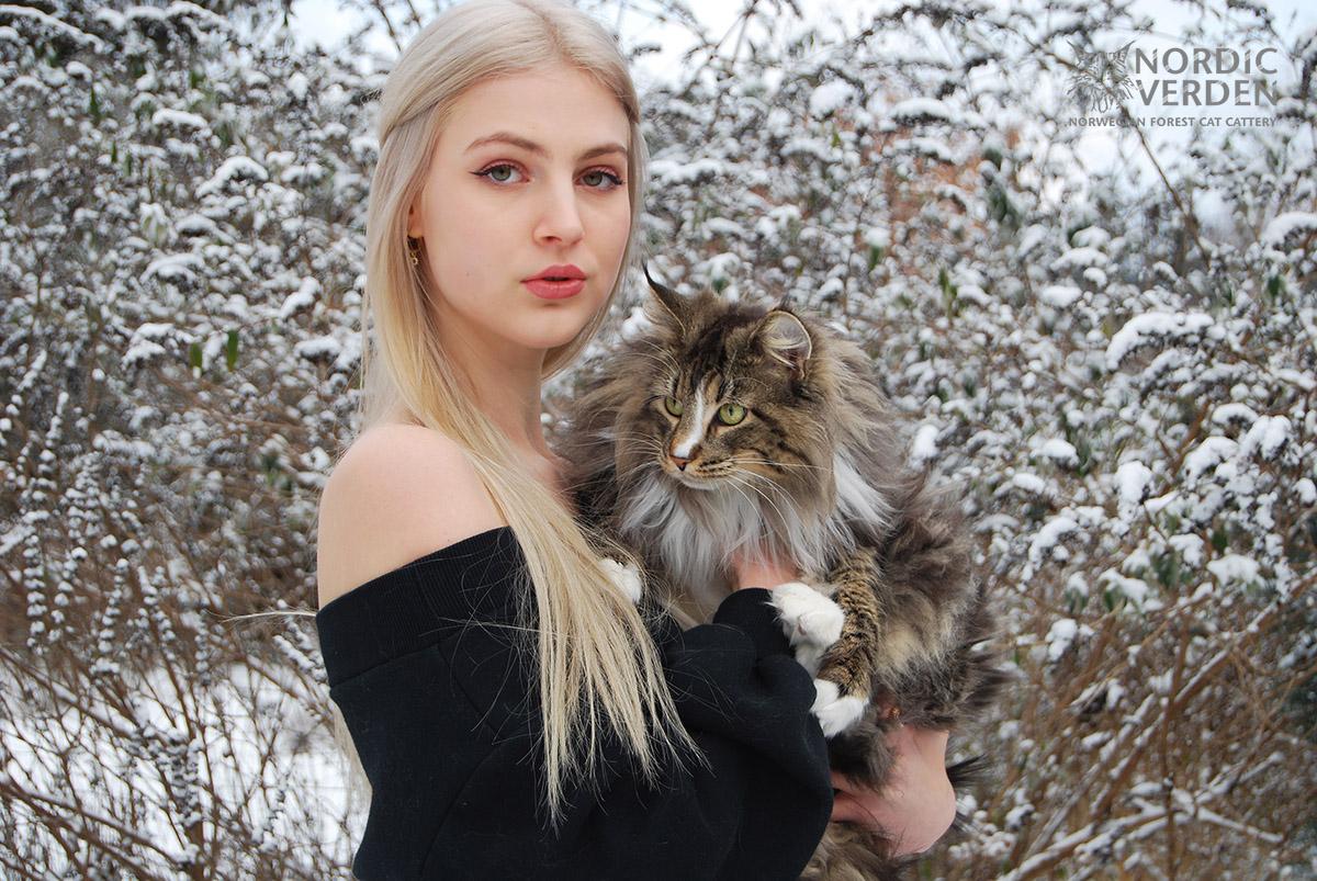 Rosita - norvég erdei macska - és Panka